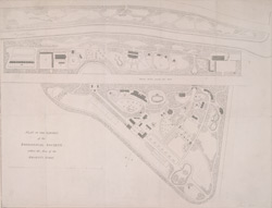 Plan of the garden of the Zoological Society, within the area of the Regent's Park